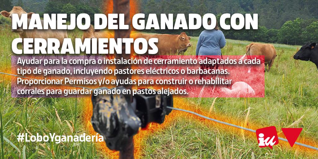 Manejo del ganado con cerramientos. La Junta de Castilla y León debe tomar medidas para la convivencia entre el lobo ibérico y la ganadería