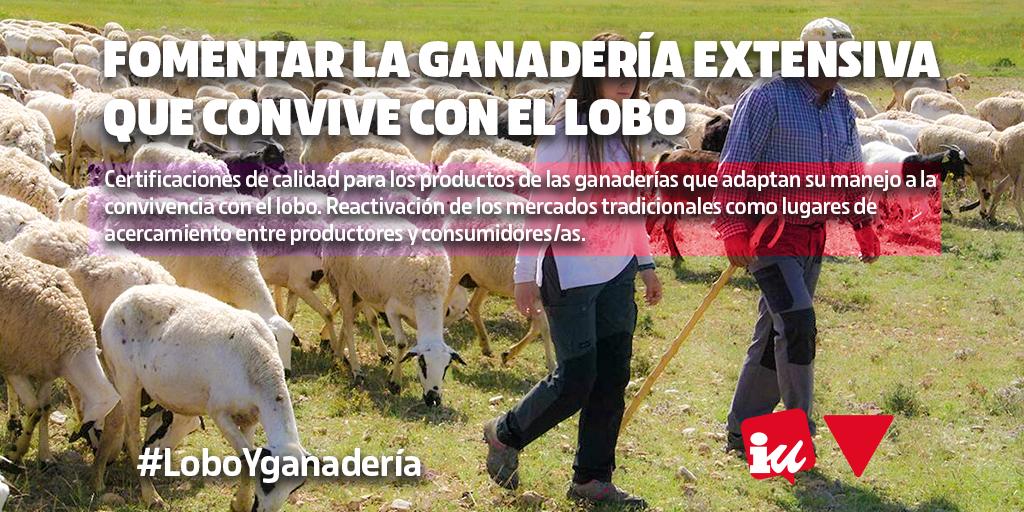 Fomentar la ganadería extensiva y sus productos que se desarrollan en convivencia con el lobo #LoboYGanadería