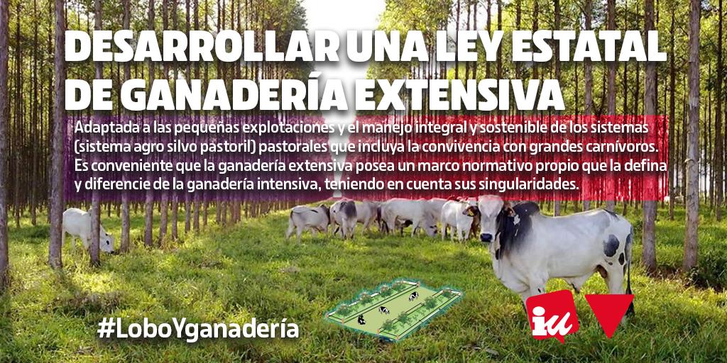 Hace falta a nivel estatal Desarrollar una Ley de Ganadería Extensiva #LoboYGanadería La Junta de Castilla y León debe tomar medidas para la convivencia entre el lobo ibérico y la ganadería